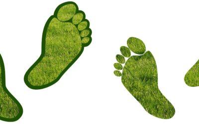 A la découverte du bilan carbone !